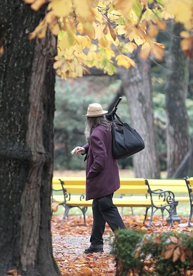 Herbst in Innsbruck -  - Herbst - autumn