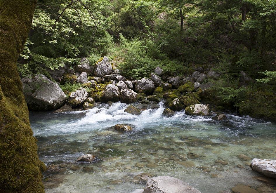 Zagori - Erste von drei Quellen des Voidomatis -  - Northern Pindus - Zagori