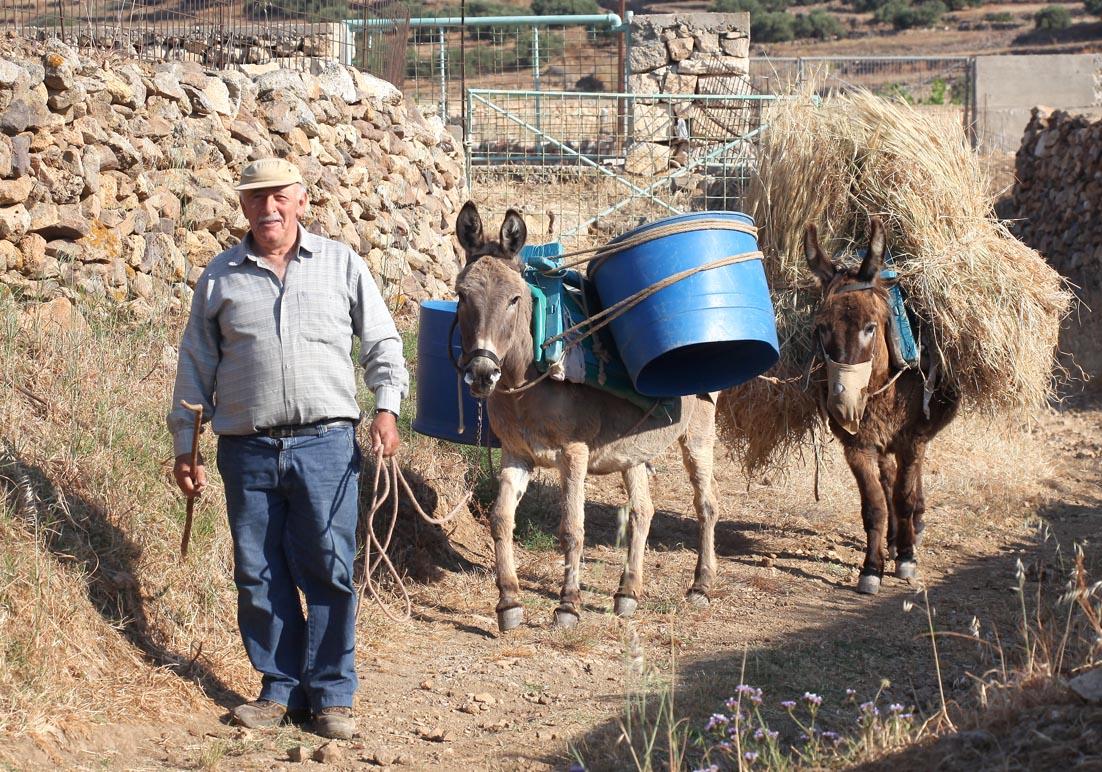 Esel mit schwerer Last - Amorgos - Pfade - paths