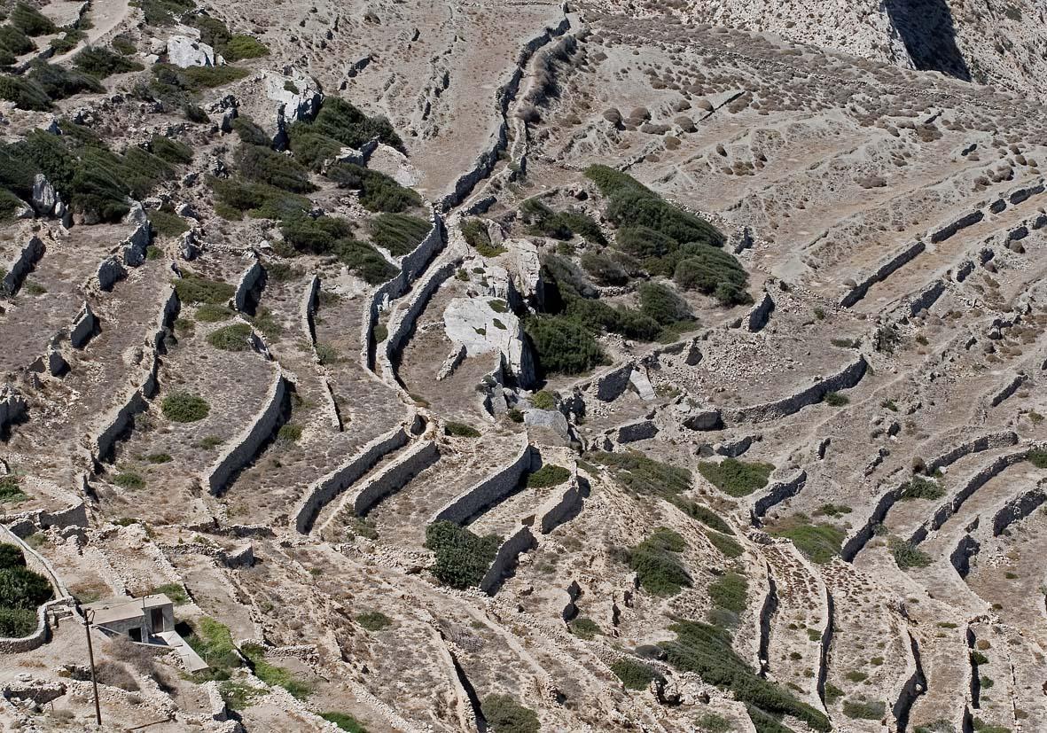 Folegandros - Blick von der Chora auf die Terrassen am Westabhang -  - Folegandros