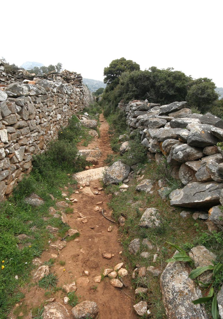Monopati - Naxos - Pfade - paths