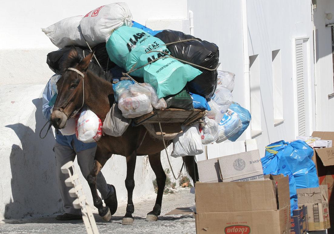Müllabfuhr  - Chora (Serifos) - Haustiere - domestic animals