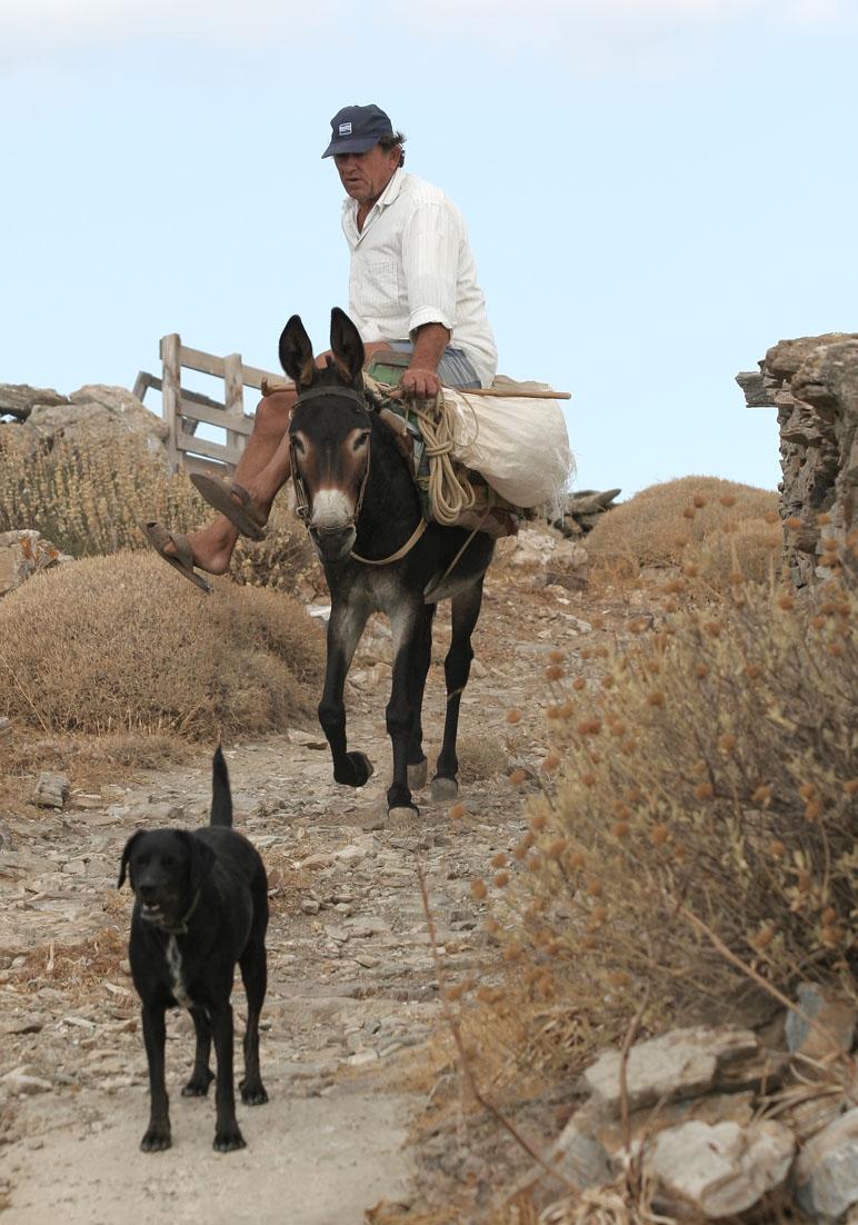 mit dem Esel unterwegs - Kythnos - Pfade - paths