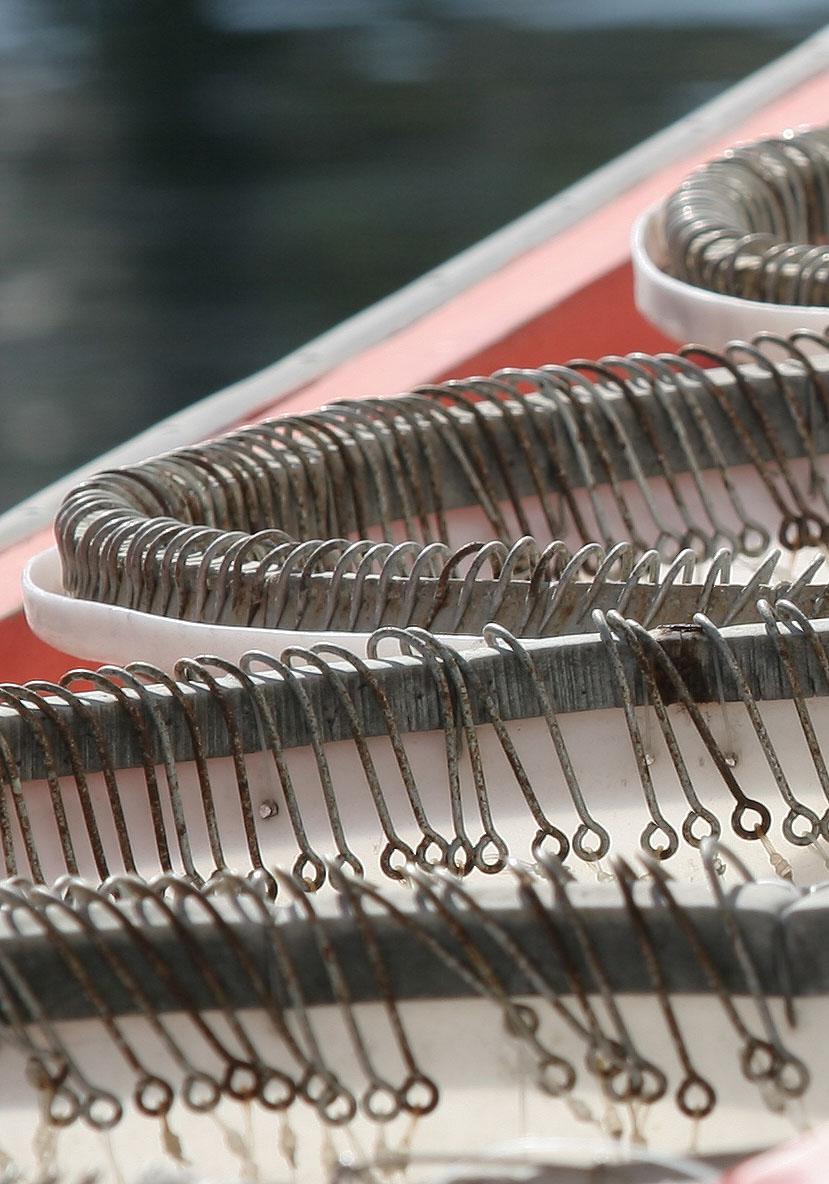 Haken für die Langleine - Kythnos - Fischerei - fishery