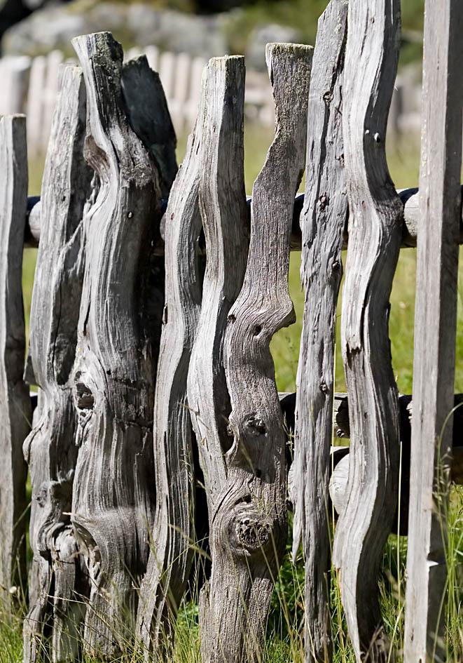 Weidezaun - Sulzenau - Zäune - fences